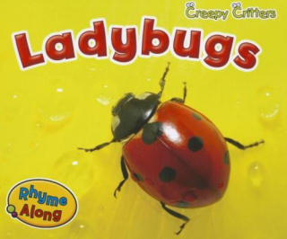 Image of Ladybugs : Creepy Critters