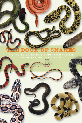 Image of The Book Of Snakes : A Life-size Guide To Six Hundred Species From Around The World