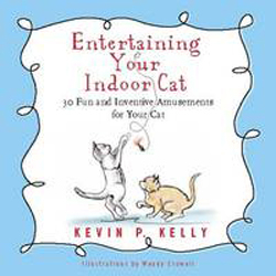 Image of Entertaining Your Indoor Cat : Fun And Inventive Amusements For Your Indoor Cat