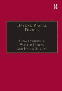 Image of Beyond Racial Divides Ethnicities In Social Work