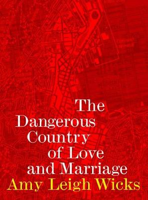 Image of The Dangerous Country Of Love And Marriage