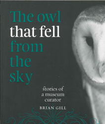 Image of Owl That Fell From The Sky Stories From A Museum Curator