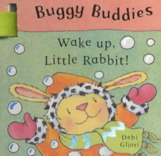 Image of Wake Up Little Rabbit