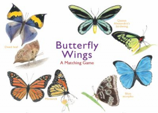 Image of Butterfly Wings : A Matching Game