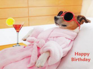 Image of Happy Birthday Relaxing Dog : Greeting Card