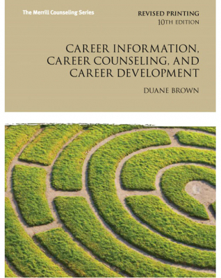 Image of Career Information Career Counseling And Career Development : The Merrill Counselling Series