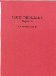 Image of Mist In The Morning : 45 Poems