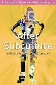 After Subculture : Critical Studies In Contemporary Youth Culture