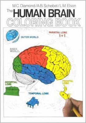 Image of The Human Brain Coloring Book