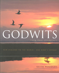 Image of Godwits : Long-haul Champions