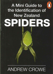 Image of Mini Guide To The Identification Of New Zealand Spiders
