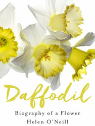 Image of Daffodil : Biography Of A Flower