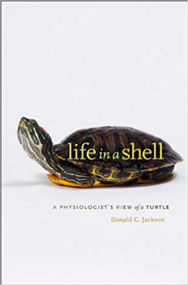 Image of Life In A Shell : A Physiologist's View Of A Turtle