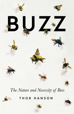 Image of Buzz : The Nature And Necessity Of Bees