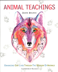 Image of Animal Teachings
