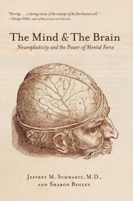 Image of Mind And The Brain