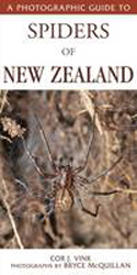 Image of Photographic Guide To Spiders Of New Zealand