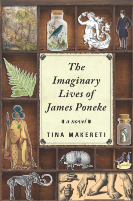 Image of The Imaginary Lives Of James Poneke