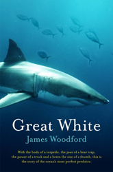 Image of Great White