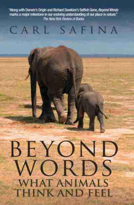 Image of Beyond Words : What Animals Think And Feel