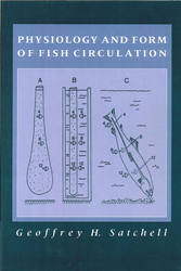 Image of Physiology & Form Of Fish Circulation