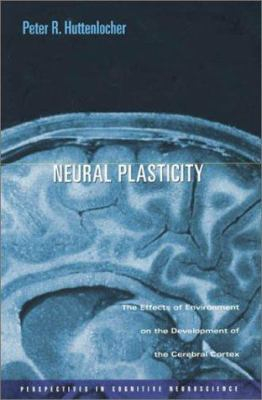 Image of Neural Plasticity : The Effects Of Environment On The Development Of The Cerebral Cortex