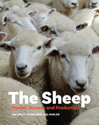 Image of The Sheep : Health Disease And Production