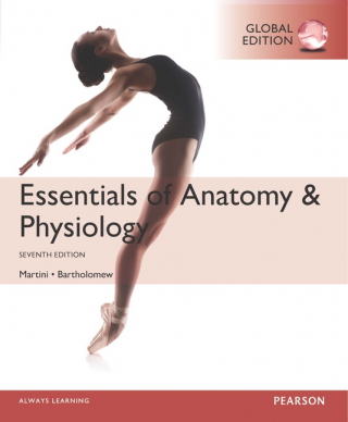 Image of Essentials Of Anatomy & Physiology Global Edition