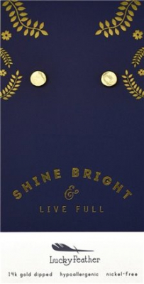 Image of Earrings : D Gold Disc
