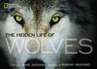 Image of Hidden Life Of Wolves