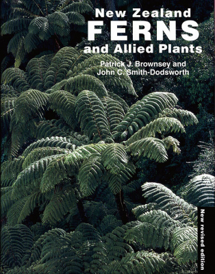Image of New Zealand Ferns And Allied Plants