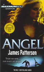 Image of Angel Maximum Ride Book 7