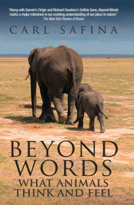 Image of Beyond Words: What Animals Think And Feel