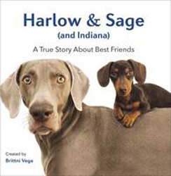 Image of Harlow And Sage (and Indiana) : A True Story About Best Friends