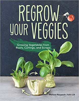 Image of Regrow Your Veggies : Growing Vegetables From Roots Cuttingsand Scraps