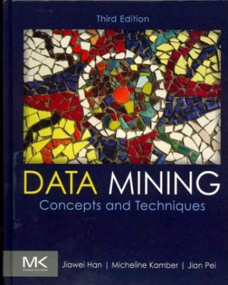 Image of Data Mining Concepts And Techniques