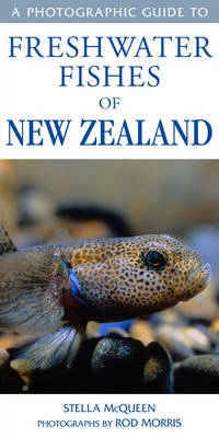 Image of Photographic Guide To Freshwater Fishes Of New Zealand