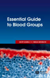 Image of Essential Guide To Blood Groups