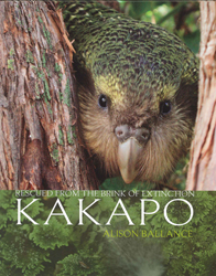 Image of Kakapo : Rescued From The Brink Of Extinction