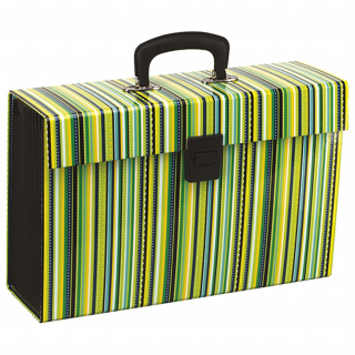 Image of Expanding File Case Fm Vivid Stripe Lime Green