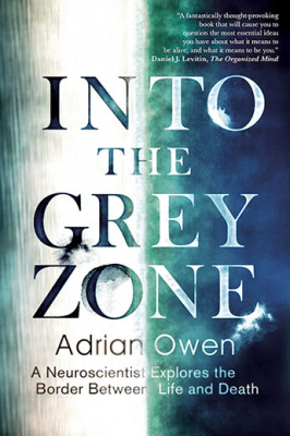 Image of Into The Grey Zone : A Neuroscientist Explores The Border Between Life And Death