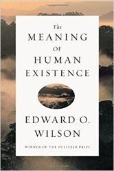 Image of Meaning Of Human Existence