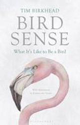 Image of Bird Sense : What It's Like To Be A Bird