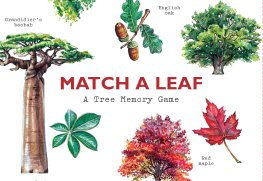 Image of Match A Leaf : A Tree Memory Game