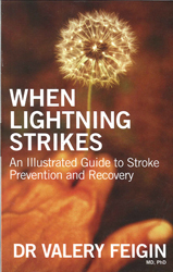 Image of When Lightning Strikes An Illustrated Guide To Stroke Prevention & Recovery