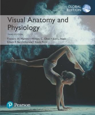 Image of Visual Anatomy And Physiology : Global Edition