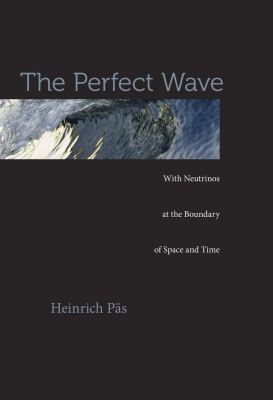Image of Perfect Wave : With Neutrinos At The Boundary Of Space And Time