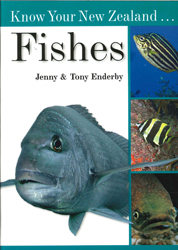Image of Know Your New Zealand Fishes