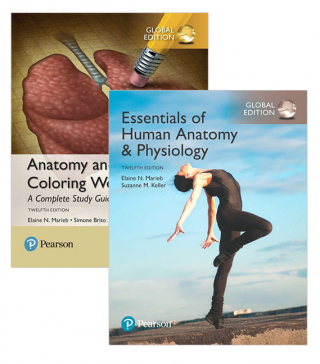 Image of Value Pack Essentials Of Human Anatomy & Physiology, Global Edition + Anatomy And Physiology Coloring Workbook: A Comple