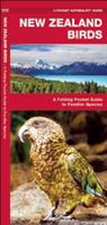 Image of New Zealand Birds : A Folding Pocket Guide To Familiar Species